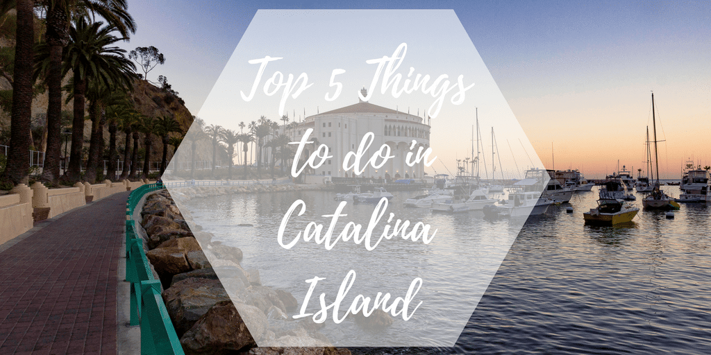 "Picture of the famous casino building in Avalon, Catalina Island with text over it that says ""Top 5 Things to do in Catalina Island."